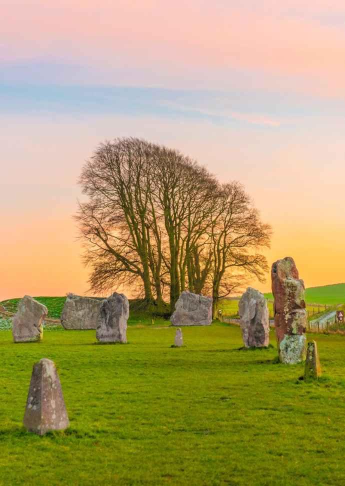 stone near tree